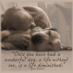 """Once you've had a wonderful dog, a life without one is a life diminished."" Dean Koontz So very true - I've been blessed to have had quite a few wonderful, wonderful dogs!"