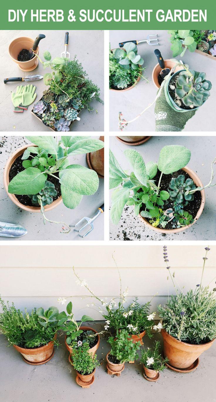 DIY Herb & Succulent Garden