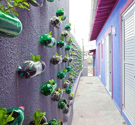 Вертикальные сады-огороды в бутылках — фото 2