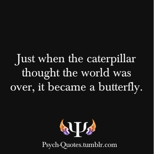 It S A Wonderful Life Quote In Book At End: Best 25+ Psychology Quotes Ideas On Pinterest