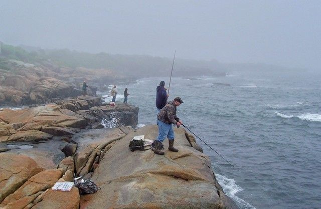 54 best images about york ogunquit maine places of for Fishing areas near me