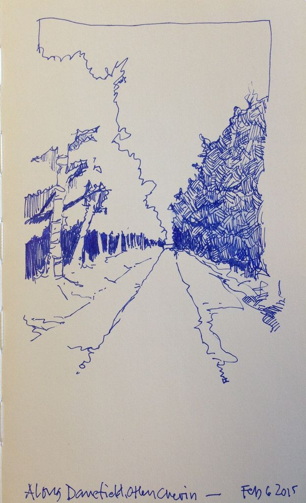Really fast sketch of a woody path in Danefield Woods, Otley Chevin.... Blue pen in a Moleskine sketchbook