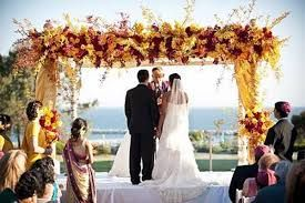 purple and yellow chuppah - Google Search