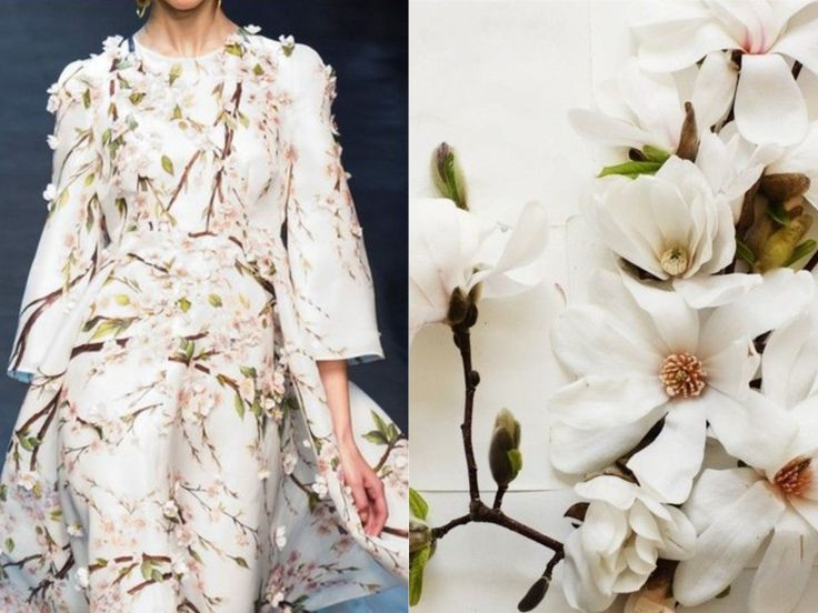 Fashion & Flowers. D&G S/S 2014 & Magnolia Photography by Kari Herer. Collage by Liliya Hudyakova