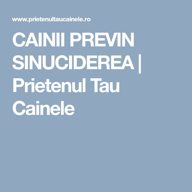 CAINII PREVIN SINUCIDEREA   Prietenul Tau Cainele