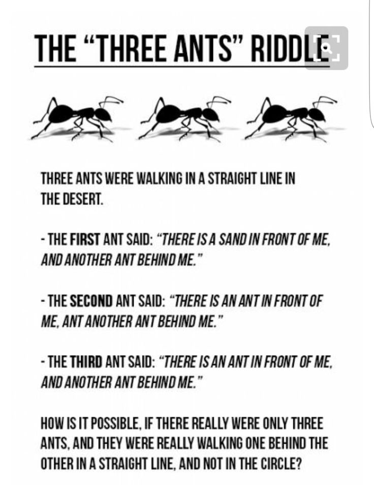 Pin by Von Miller on puppies Sayings, Two by two, Riddles
