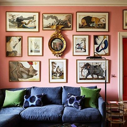 A Pink Living Room With Gallery Wallof Prints By Walton Ford Walls Are In Dulux
