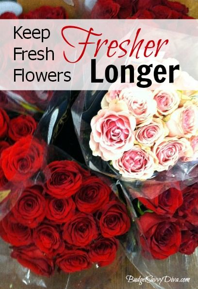 how to keep your flowers fresh