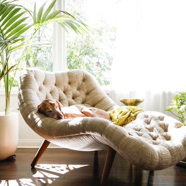A modern curved reading lounger placed by the window is ...