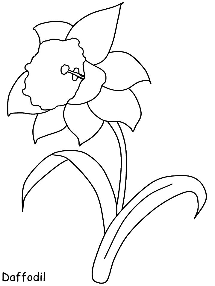 Fingernägel Vorlagen Print Coloring Page And Book, Daffodil Flowers Coloring