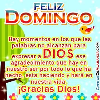 feliz domingo cristiano feliz domingo 12713.opt350x350o00s350x350 225x225