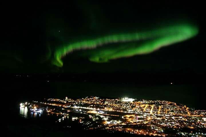 Narvik Aurora