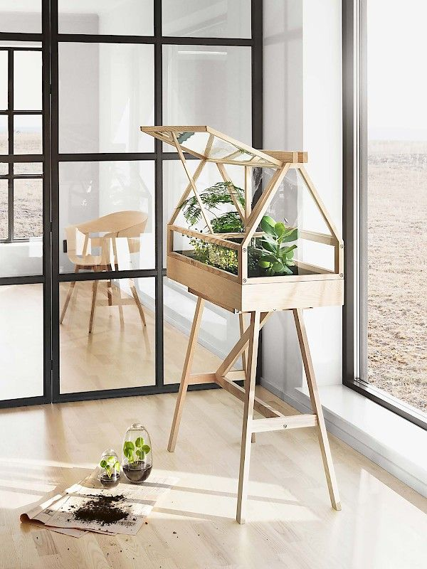 Greenhouse in livingroom (P)