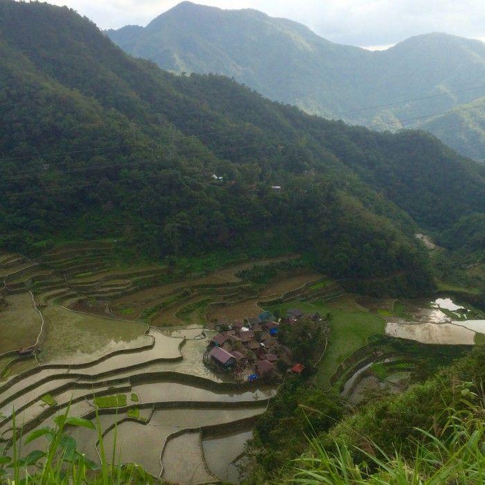 rizières en terrasse de Banaue et Batad