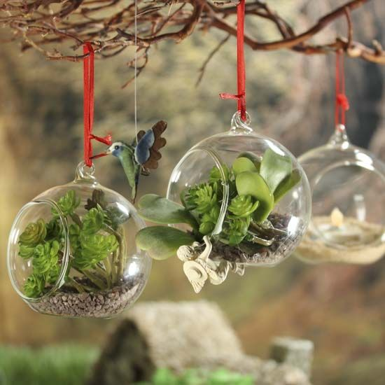 Clear Glass Side-Opened Terrarium Ornaments - 31 Best Terrarium Ornaments Images On Pinterest Terrarium