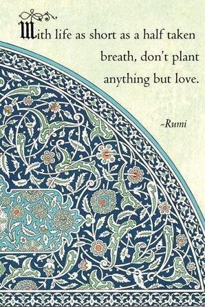 Love, Peace and Raw food