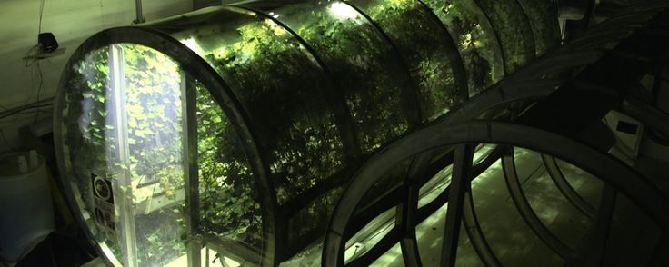 Scientists Have Already Built a Prototype Greenhouse for Mars | University of Arizona researchers have been working on a martian greenhouse design that would allow astronauts to grow food & produce oxygen. [The Future of Mars: http://futuristicnews.com/tag/mars/]