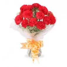 Say Hi, Red Carnations Bouquet, Carnation Bunch