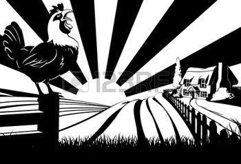 coq: Une maison de ferme chaumière dans un paysage idyllique de collines avec coq ou coquelet chant au premier plan