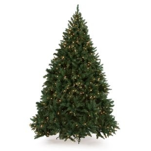 Classic Pine Full Pre-lit Christmas Tree $99 Not a bad price.....looks pretty! Found at ChristmasTreesGalore.com