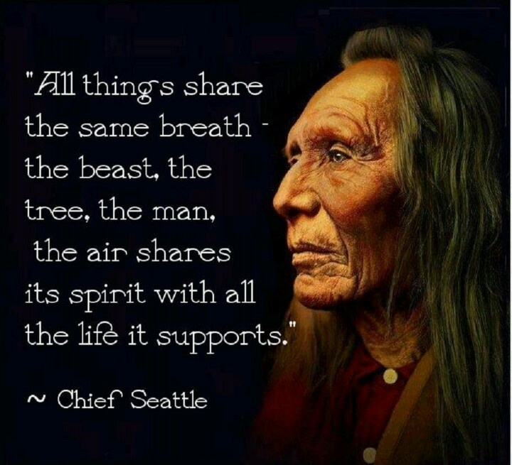 All things share the same breath, the beast, the tree, the man, the air shares it's spirit with all the life it supports. Chief Seattle