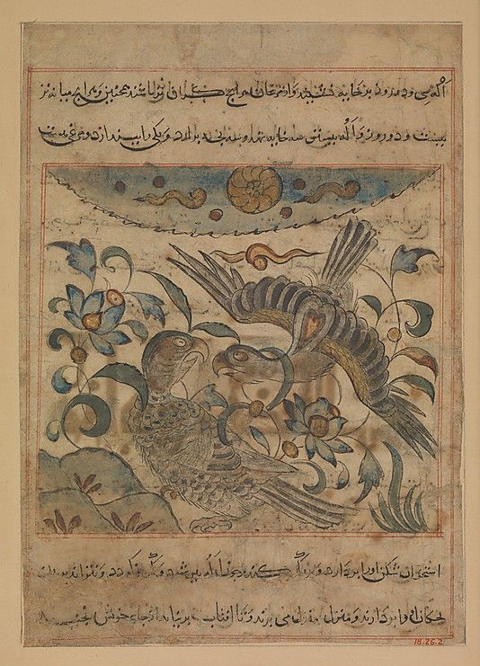 """""""Pair of Eagles"""", Folio from a Manafi' al-Hayawan (On the Usefulness of Animals) of Ibn Bakhtishu' Ibn Bakhtishu' (d. 1058) Date: ca. 1300 Geography: Iran Medium: Ink, opaque watercolor, and gold on paper Dimensions: Painting: H. 5 3/4 in. (14.6 cm) W. 6 3/16 in. (15.7 cm) Page: H. 15 7/8 in. (40.3 cm) W. 12 1/2 in. (31.8 cm) Mat: H. 19 1/4 in. (55.9 cm) W. 14 1/4 in. (40.6 cm) Metropolitan Museum of Art 18.26.2"""