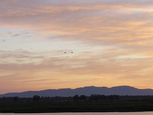 078 Sunrise from 05:00 at Kuifkopvisvanger