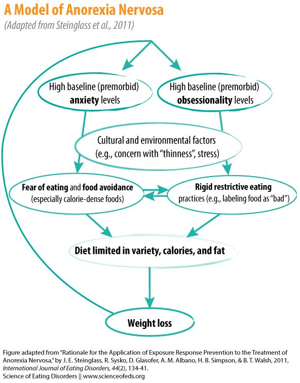 research paper emotional eating Those are the clinical d, research paper essay/term paper: eating disorders to dangerous methods of weight control and can do serious emotional damage to the.