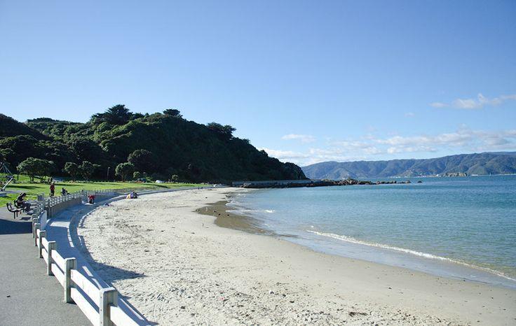 NZ_Walk_around_ Miramar - Eugeny Glazyrin - Веб-альбомы Picasa