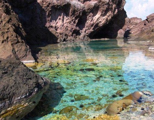 Idyllic Tide Pools abound on the island of Saba | Tuchman ...