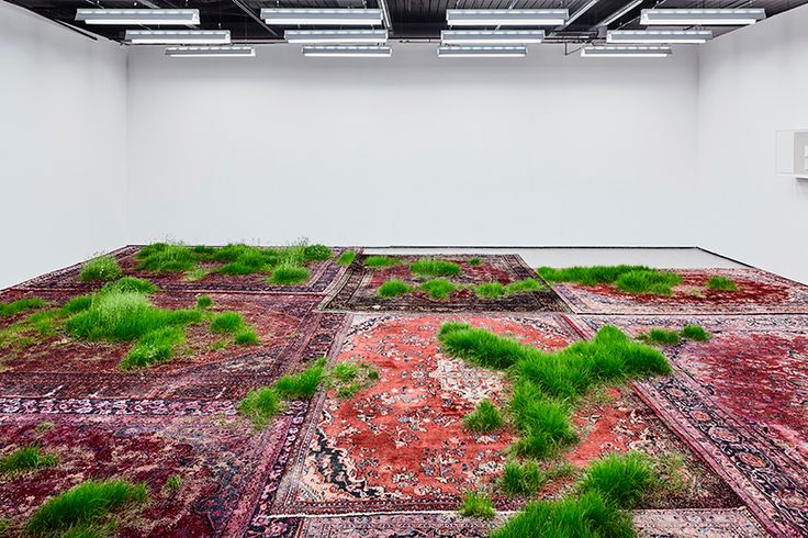 within the korean cultural centre UK, patches of lush vegetation spill across a surface of colorful persian rugs.