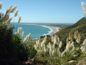 Google Image Result for http://www.siesta.co.nz/images/pix-ahipara-bay1.jpg