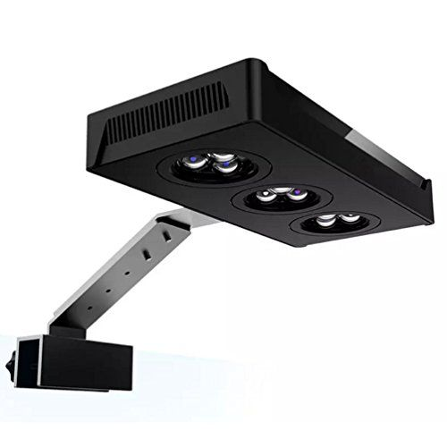 Hipargero Touch Control 30w CREE Nano LED Aquarium Light for Coral Reef Fish Tank Saltwater  Specially designed spectrum for marine tanks, perfect led layout, color corals well and grow coral well, suitable for 30-50 cm small tank.  2 dimmable led channels with touch control function, easy to control the light intensity of white and blue.  Equipped with intelligent temperature control fans, the fans will work and run faster or slower according to different temperature, very quiet.  3W ...