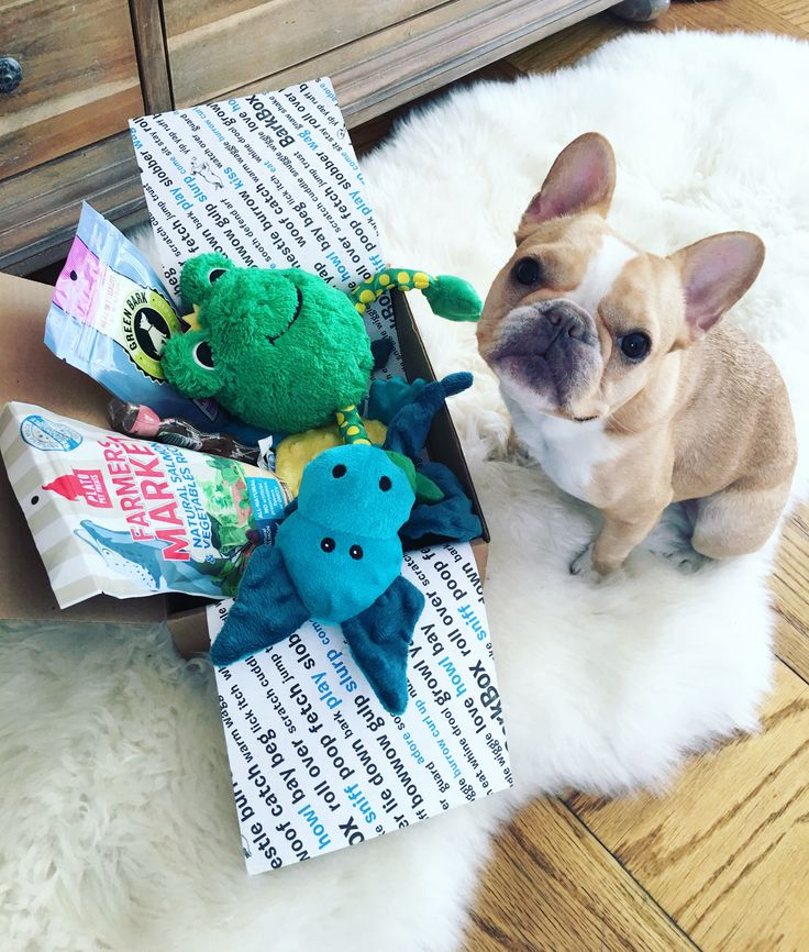 For a limited time, Pinners get a free extra month of BarkBox on a 3, 6, or 12-month plan. We deliver a monthly themed box of curated all-natural doggy treats and fun toys right to your door. It's a pawsome experience (Chloe the Mini Frenchie enjoyed it!) for you to share with your pup. Plans can be customized for big or small dogs, heavy chewers, and pups with allergies. Most of all, it just makes dogs happy. Offer expires 12/14/2015.