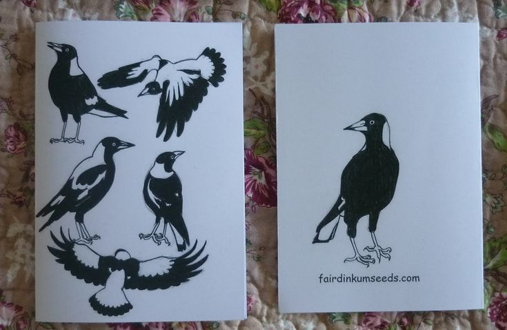 Magpie Greeting Card Gift