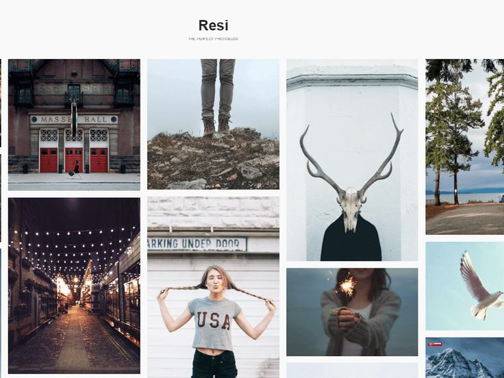 36 best Free Photography WordPress Themes images on Pinterest ...