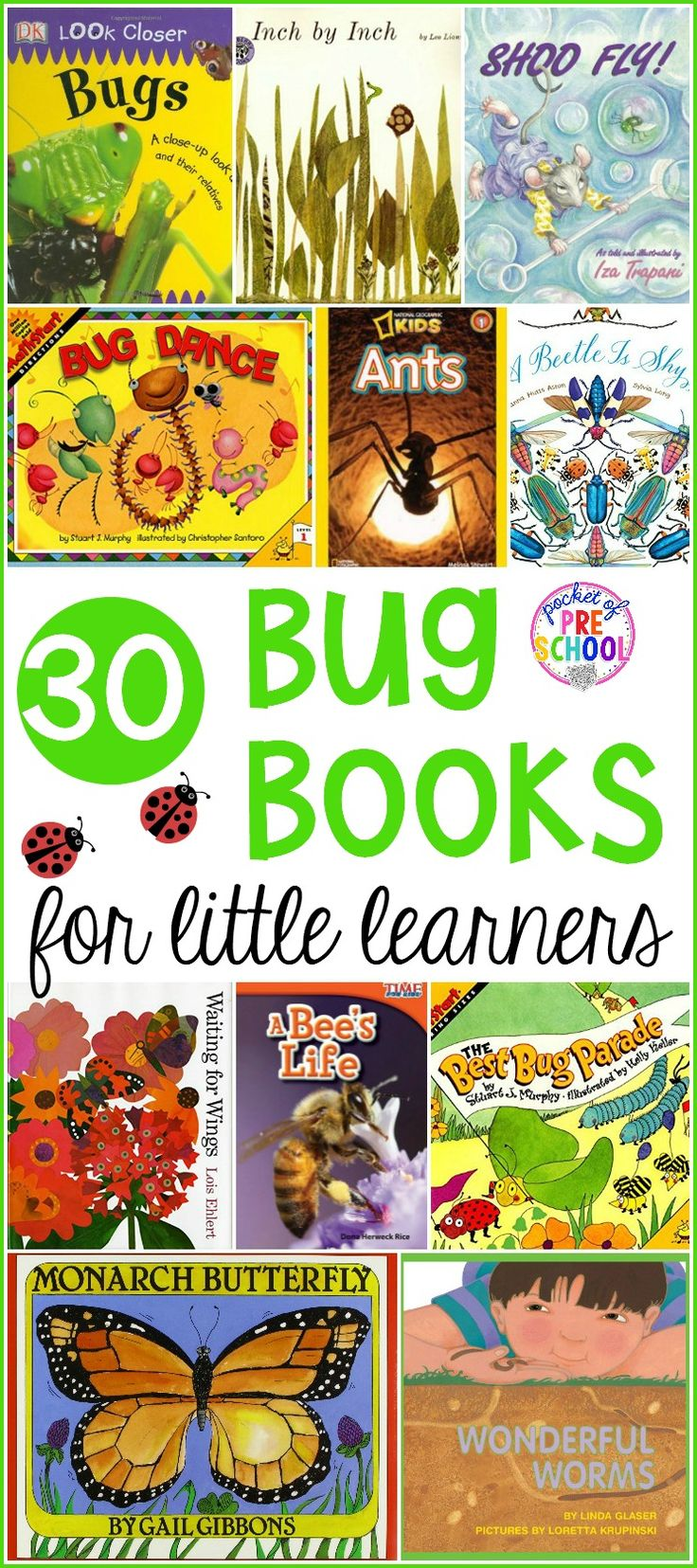 938 best Bugs & Insect Activities for Kids images on Pinterest ...