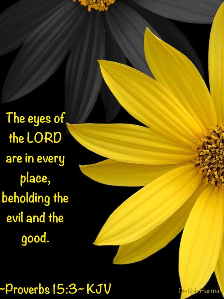 The eyes of the LORD are in every place, beholding the evil and the good.