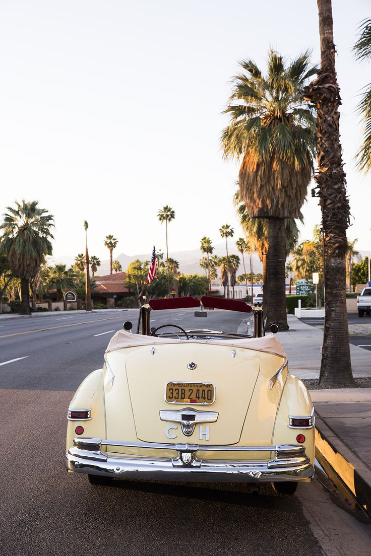 palmtrees - road - old car