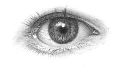 A step-by-step guide to drawing the eye in pencil by www.onlypencil.com. Touches on anatomy but the best part is the technique used to highlight the fibers in the iris.