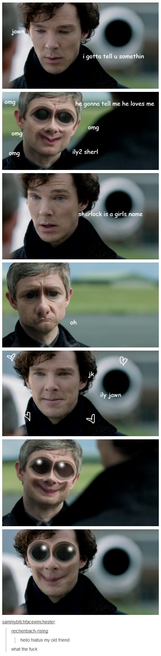 ah... sweet, sweet hiatus... Sorry for the language. Don't ship Johnlock, but this was too funny not to pin.