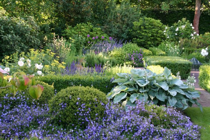 Offene Gartenpforte › Zinsser Gartengestaltung, Schwimmteiche und Swimmingpools