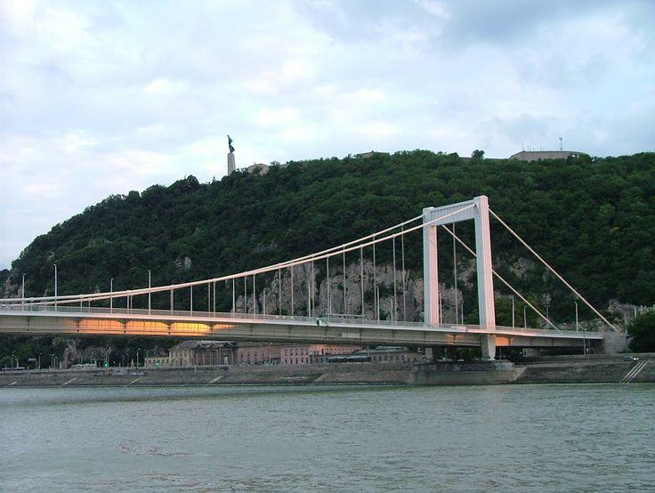 Gellért Hill and Erzsébet bridge.