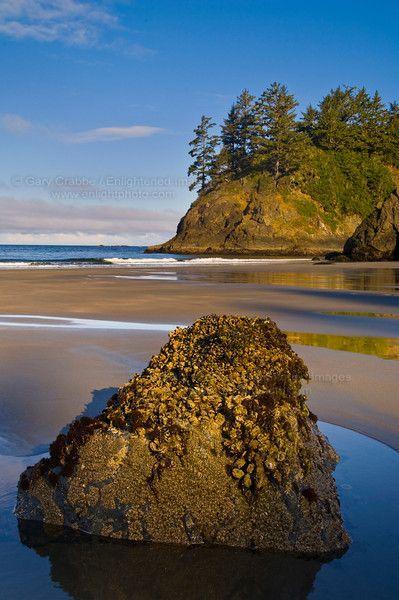 Trinidad State Beach – Humboldt County, CA