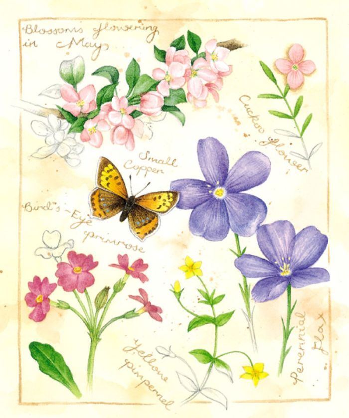 Lisa Alderson - LA Floral_MAY.JPG
