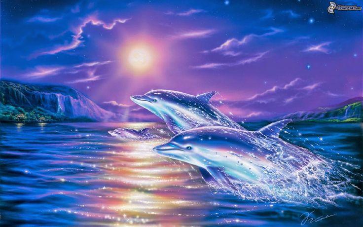 Delfines, dolphins, estrella Sirio, Sirus star: