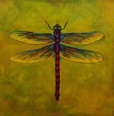 Dragonfly Lexie By Sheryl Bunnage