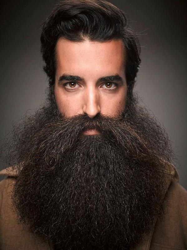 Facial hair styles idea mens