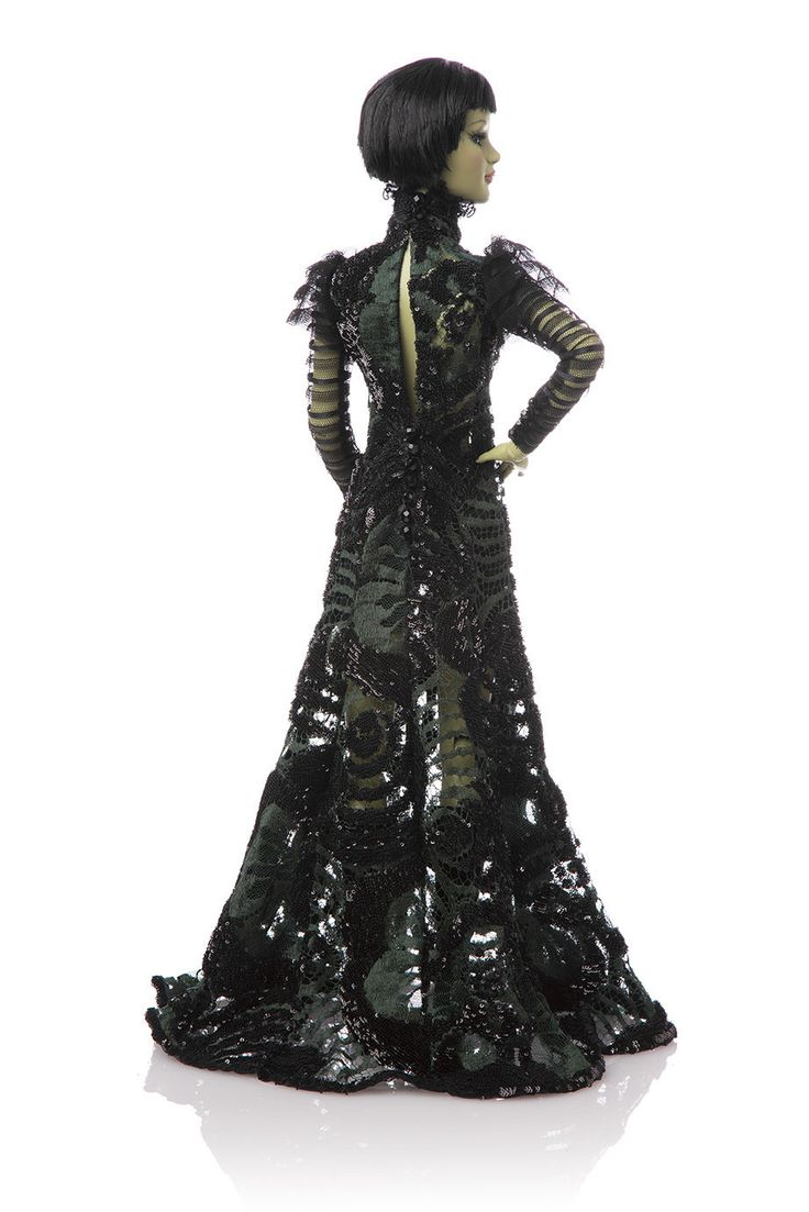 27 best Wicked Witch of the West Costume images on Pinterest ...
