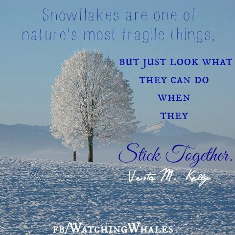 Quotes for Inspriation / snowflakes / stick together ...